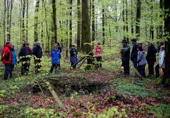 Waldspaziergang mit Förster Schickle